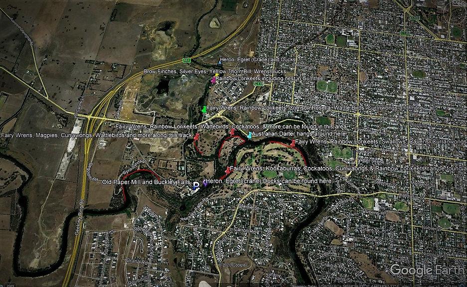 Rod's Map.jpg