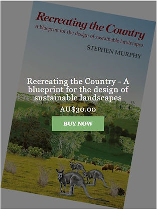Stephen's book.jpg