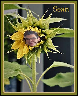 Sean.jpeg