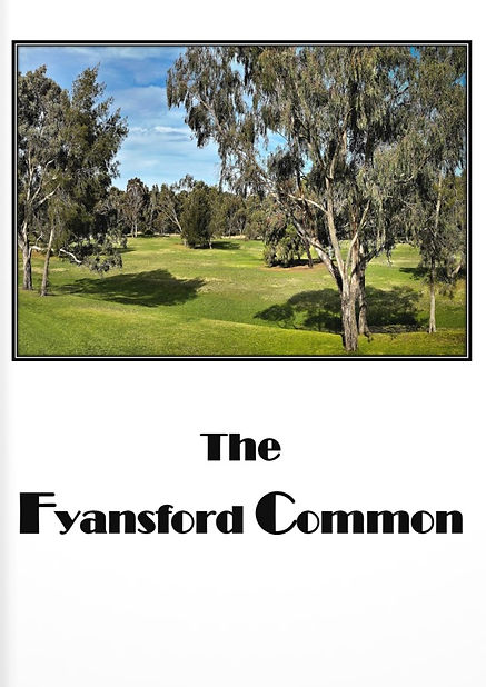 The Fyansford Common COVER.jpg
