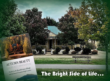 The Bright Side pof Life (Cover).jpg