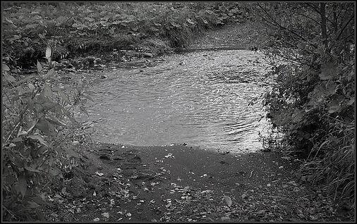 1280px-Rye_Water_Ford,_Dalry.jpg