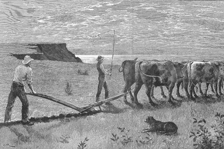 The Leader, Melbourne, 1887 First farmin