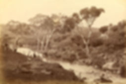 View on the Moorabool River, Batesford B