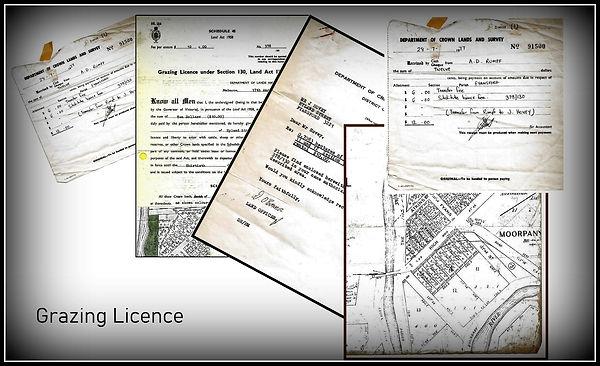 Dianne's Grazing Licencepp.jpg