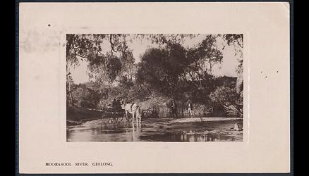 MOORABOOL RIVER, GEELONG Ca 1908.png