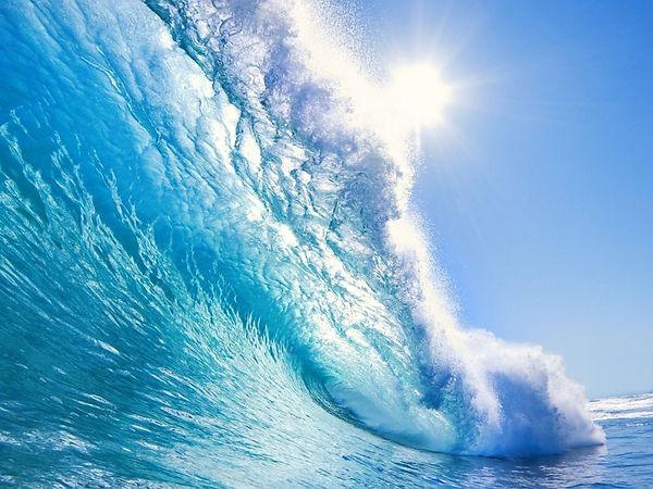 To surf.jpg