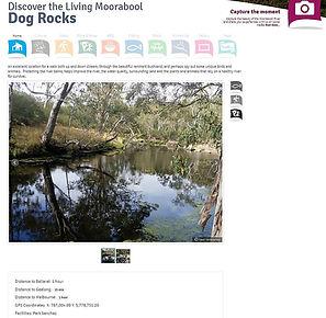 Dog Rocks.jpg