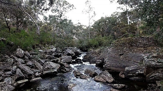 The Moorabool River.jpg