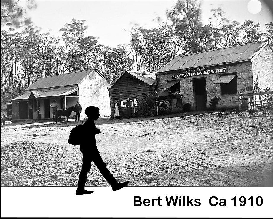 Bert Wilks.jpg