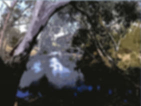 Moorabool River Environmental Water Mana