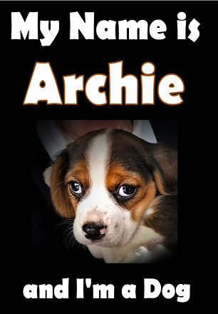 COVER My Name is Archie.jpg