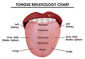 vector-tongue-reflexology-chart.jpg