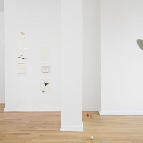 Efrain Lopez Gallery | Yellow Tulips