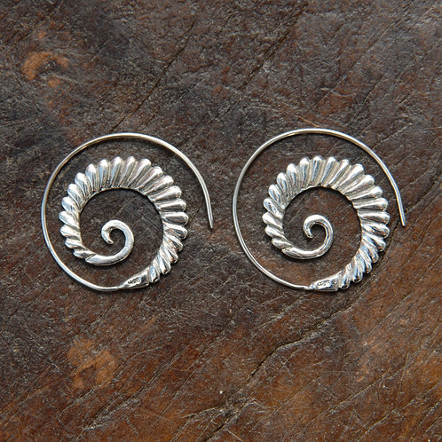 Shell Spiral Hoops
