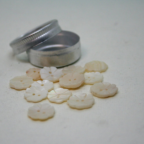 Pot of Flower Shell Buttons