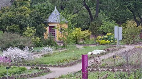 Jardin des Plantes in Paris