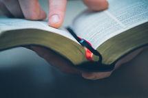 Sunday readings, Bible.jpg