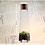 Thumbnail: 灯台のアルパカ