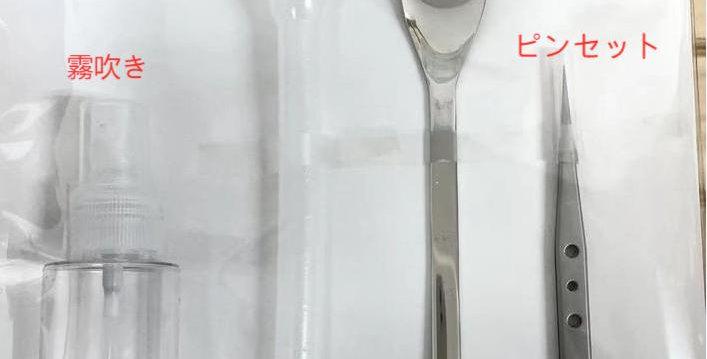苔テラリウム スターターセット