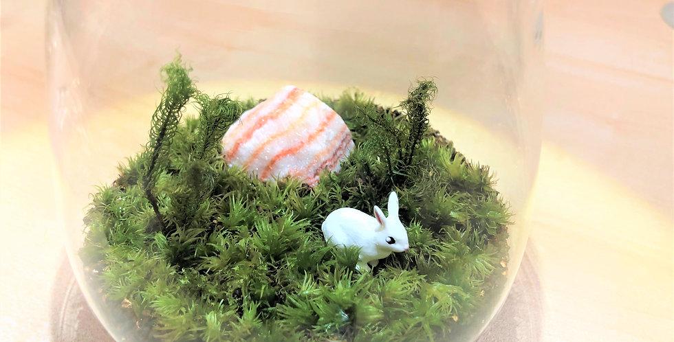 ホワイトウサギ(自作)