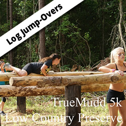 Log-Jump-Over