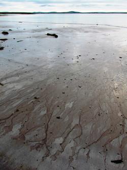 Shoreline 8