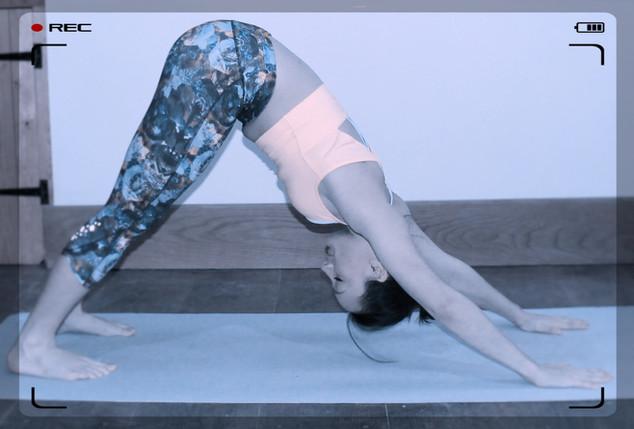 Yoga Asana Library (Yoga Poses Library)