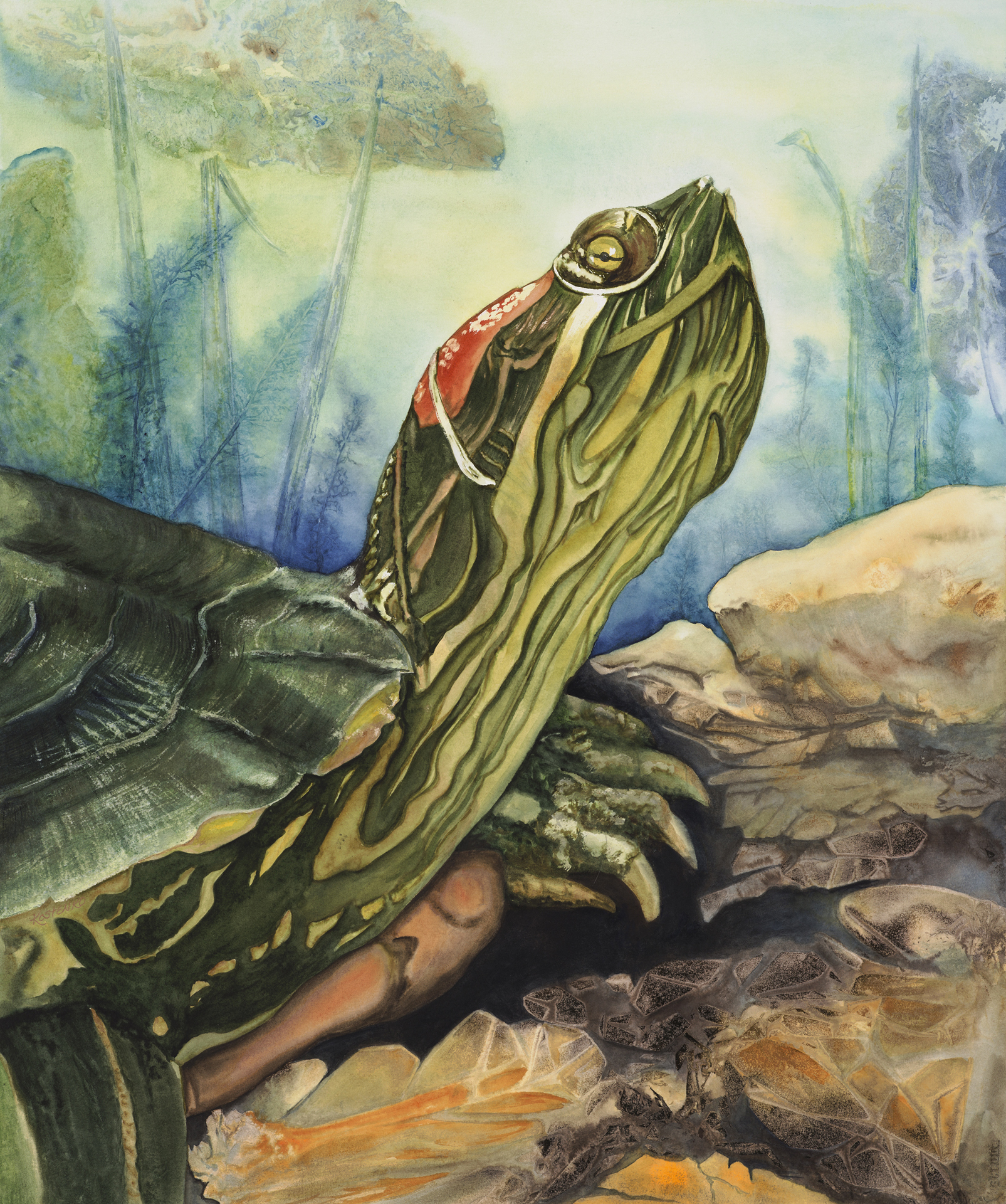 Kostenko_D_Turtle 2016