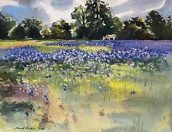 FashiManal_Spring in Spring Texas.jpg