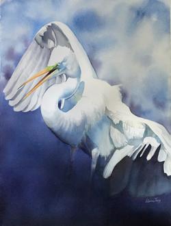 JaryElaine_Late Afternoon Egret