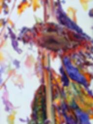 WarrenSoon_Rebirth II-Sunflower.jpg