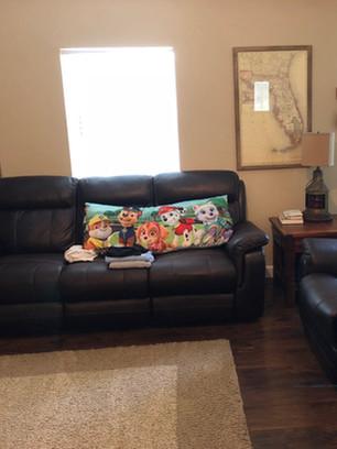 Clean Living Room - Padegenis Cleaning -