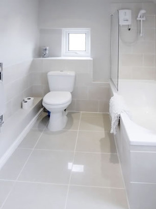 Restroom and Bathroom Cleaning - Titusvi