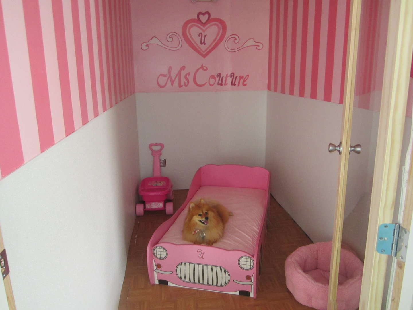 Ms Couture Suite