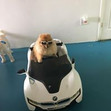 Hop In And Lets Ride