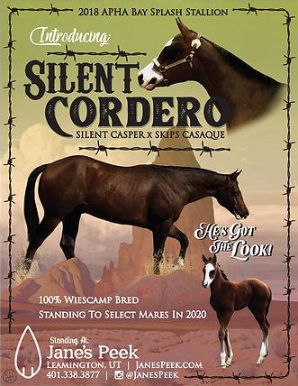 Silent Cordero Flyer 2020 small.jpg
