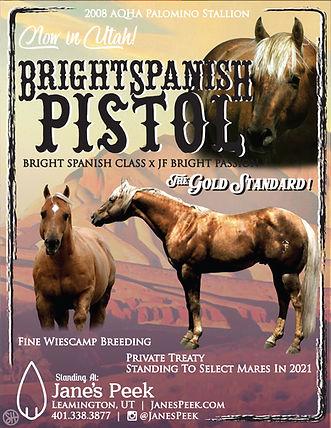 BrightSpanishPistol Flyer 2021.jpg