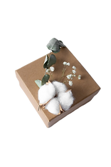 Box%20with%20cotton%20bud%20and%20dried%