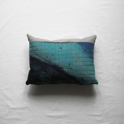 Sea Cushion 1