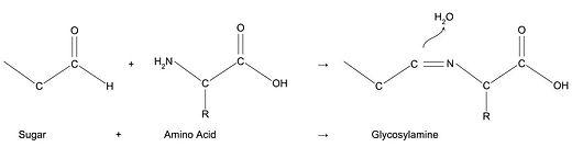Glycosylamine.jpg