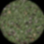 GREEN-sm-150x150.png