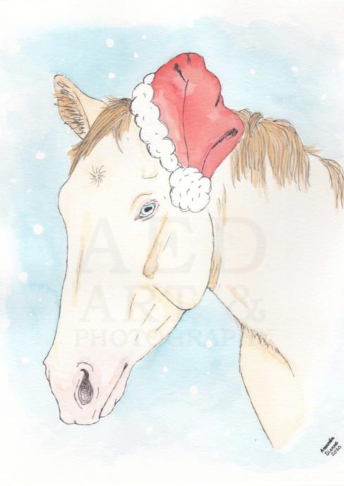 Holiday Frosty