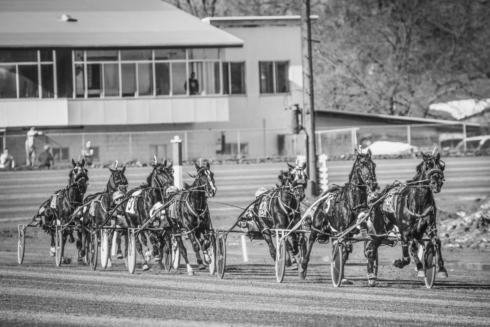Saratoga Harness Track