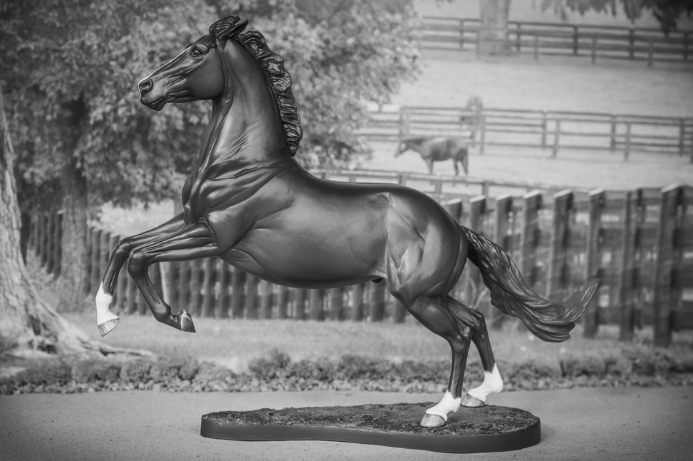 Custom Stock Horse