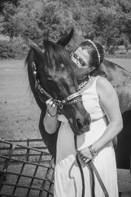 Horse & Bride