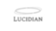 Lucidian Logo.png