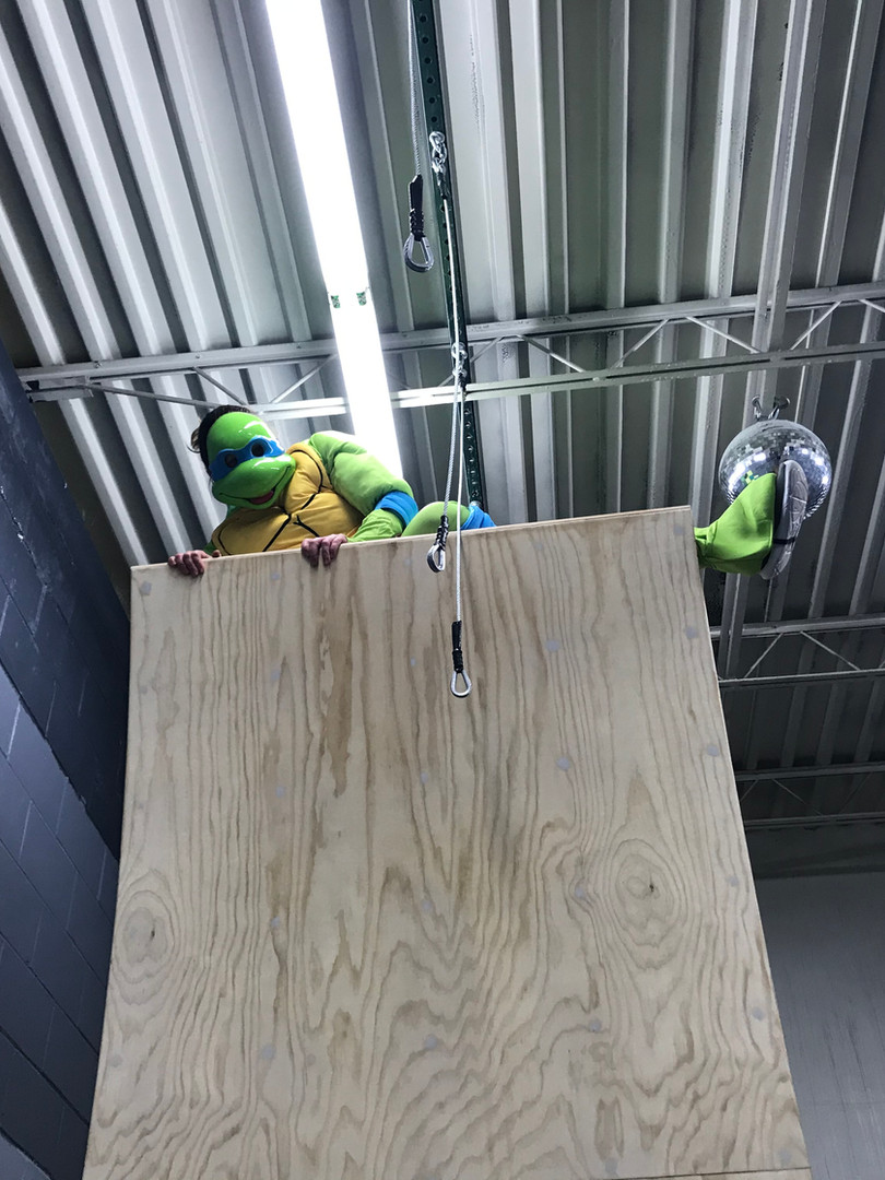 Ninja Top of the Warped Wall