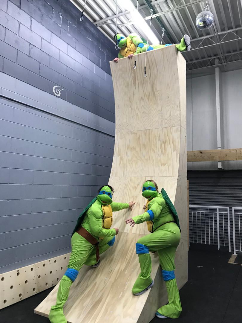Ninja Warped Wall