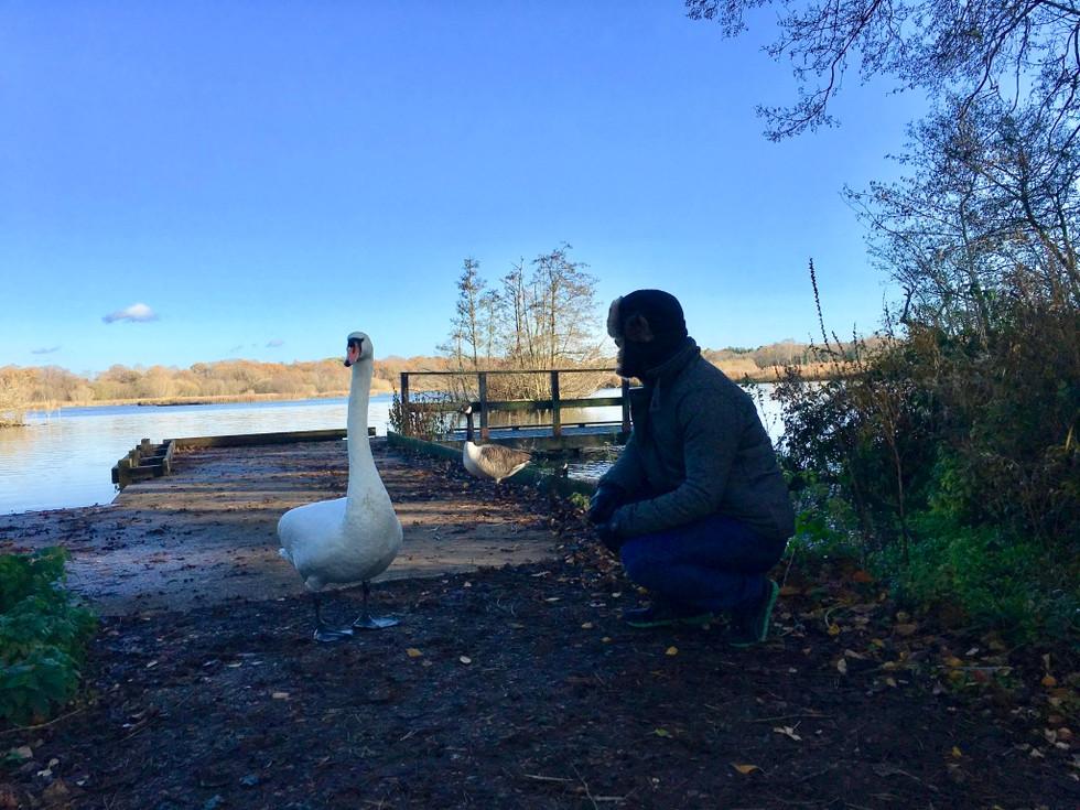 런던 근처 서리의 플릿 호수에서 (At Fleet Lake in Surrey)